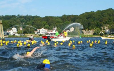 Mystic Sharkfest Swim 2019